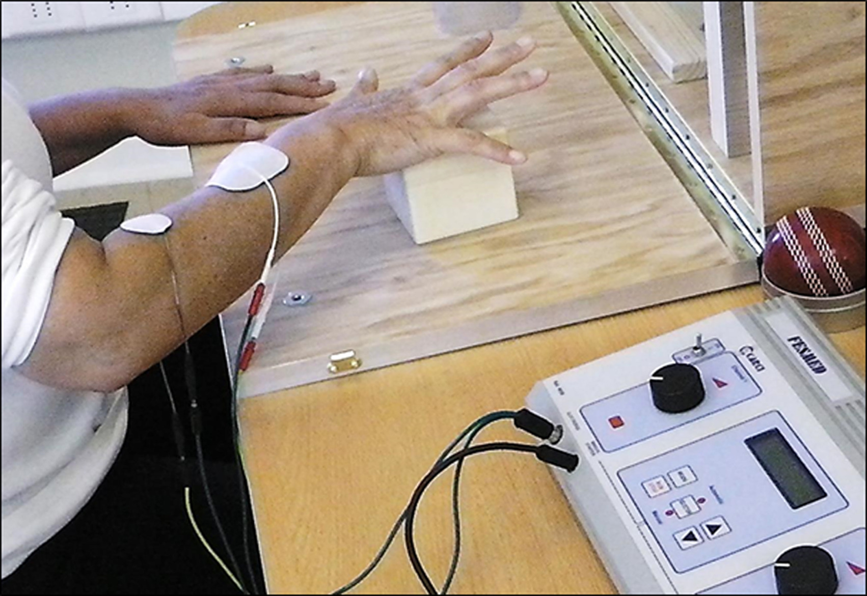 Effect Of Functional Electrical Stimulation On The